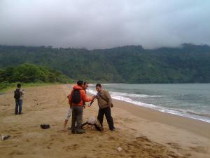 Pantai Perawan Sidoasri 3