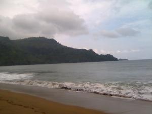 Pantai Perawan Sidoasri 13